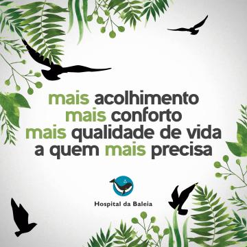50ª Campanha - Projeto Varandinha!